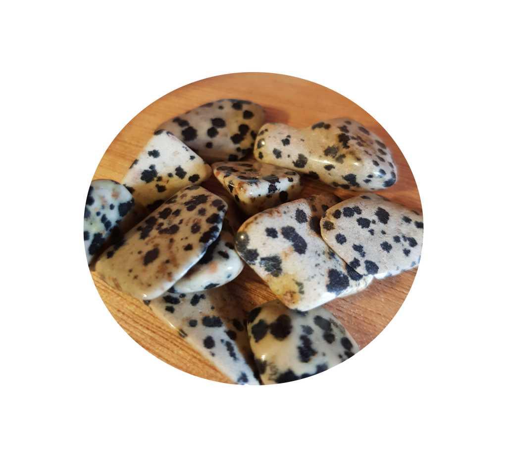 Tumbled Dalmatian Stone
